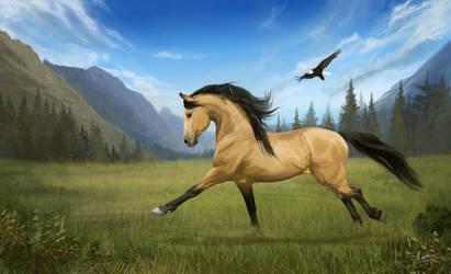 Spirit by JulieBales