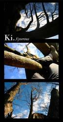 Ki. by Xyverous