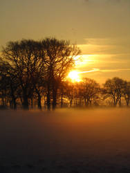 January Morning by LadyElleth