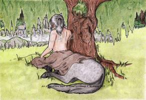 Havensfall: Solstice Glen by randomonia