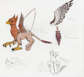 Takhacco Character Ref by hawkfangor