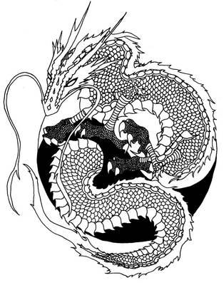 Yin-Yang Dragon by hawkfangor