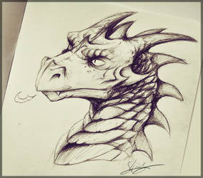A Dragon from the Sketchbook by Shirder
