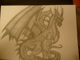 Dragon by shinku2187