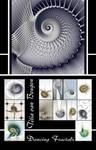 Fractal calendar -- 2010 by titiavanbeugen