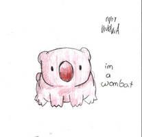 Wombat by kouklara