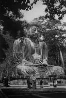 Buddha 201412 by paullung