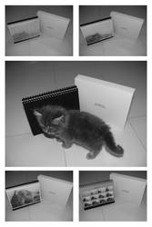 Realism Drawing Calendar 07 by paullung