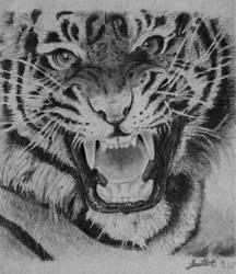 Roaring Tiger by EmpressLeviathan4