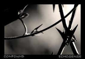 Confound by Echosense