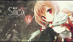 Silica signature by NiceSlicer