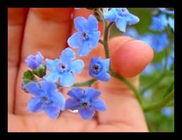 Soft Blue by hobbitgoddess