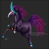 Magi Fortune by Selakora