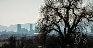 City of Denver by 1001G