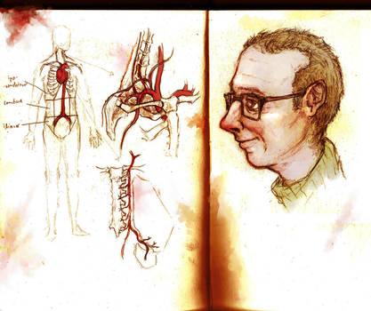 Vascular system - Anatomy sketch by BenJogan