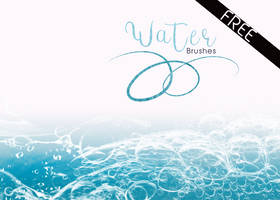Waterbrushesfree by imakestock