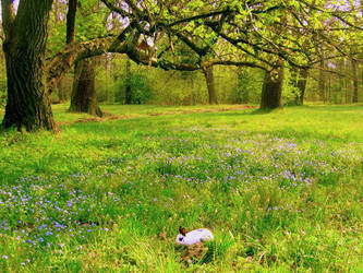 blue meadow by Lady-Twiggy