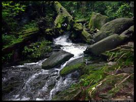 Faerie Cascades by ransim