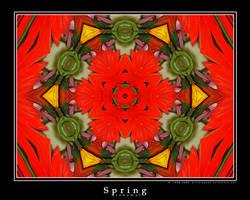 Spring Renewal by ransim