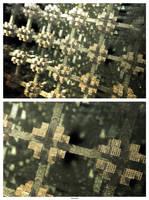 240410+Detail by Pasternak