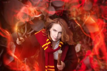 joan rouling. Faculty of Gryffindor by VeroNArt
