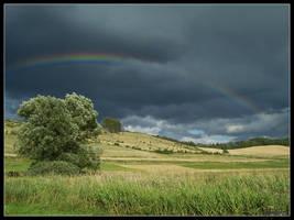 Rainbow by Tindomiel-Heriroquen