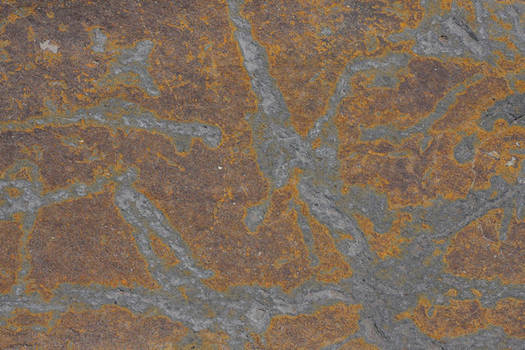 Stone Yellow Outline Texture 3888 X 2592 by textureviewer