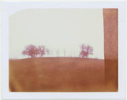 high point, polaroid by equivoque
