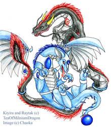 Kiyira and Raytak by chaoka