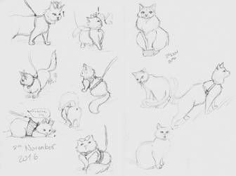 Cat Doods by micamone