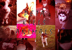 PETA Kills Animals by psychogizmo
