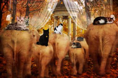 Cats Riding Elephants by TheFantaSim