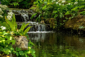 Garden Falls by EmMelody