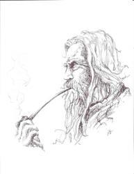 Gandalf Laments by jokazim