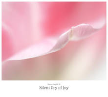 Silent Cry of Joy by signmeupscotty