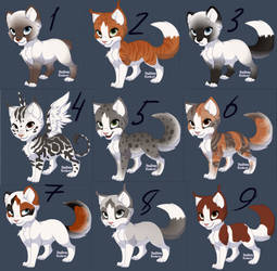 Cat Adoptable [ OPEN ] 5 points. by Cute-Adopt01