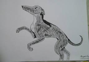 Realistic Greyhound by wild-d0g