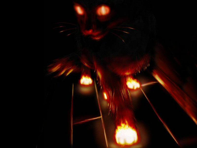 Flame Kitten by Heterodyne