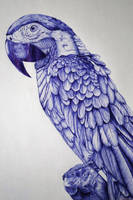 Parrot Ballpoint pen by DrawingNynke