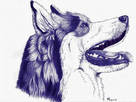 Dog ballpoint pen 3 by DrawingNynke