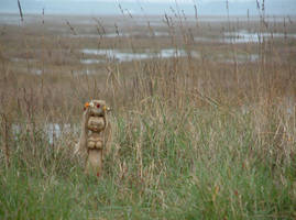 Nertha in the Marshes by Thorskegga