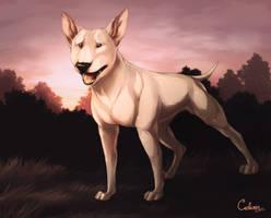 Bull Terrier by Cederin