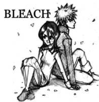 Ichigo and Rukia by AwkToast