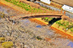 Wooden bridge in early Spring. by Furuhashi335