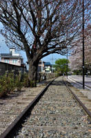 Ex-short branch railway line of Sagami line by Furuhashi335