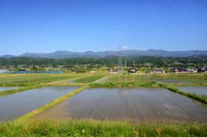 Inadani by Furuhashi335