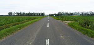 Long and straight road in Hokkaido by Furuhashi335