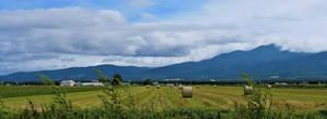 Farm in Shiretoko by Furuhashi335