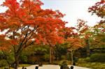 Karesansui in Entsuin 2 by Furuhashi335