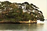 Oshima in Matsushima by Furuhashi335